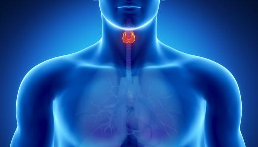 Kolesterool ja südame-veresoonkonna haigused III